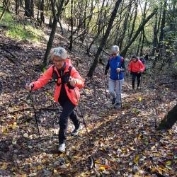 nordic walking novara_salita_cameri